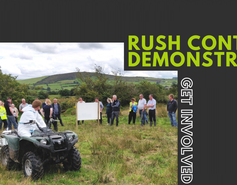 Rush control demonstration